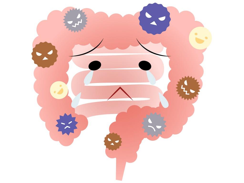 生命の乳酸菌7選 いのちの乳酸菌 口コミ 効果 解約方法