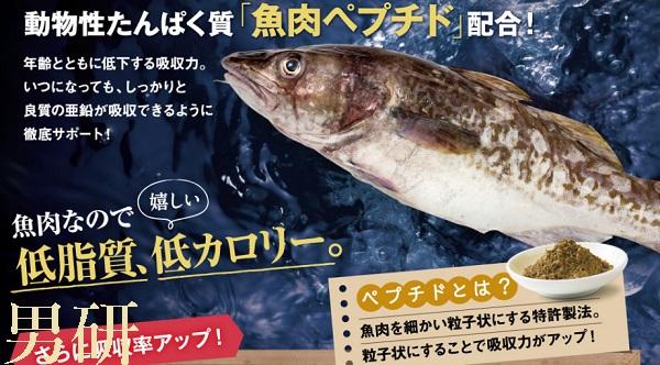 海宝の力,成分,魚肉ペプチド