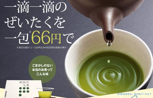 白井田七,お茶,まとめ
