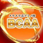 メタルマッスルHMB,BCAA