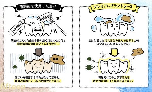 研磨剤不使用のホワイトニング歯磨き粉