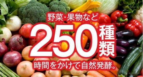 250種類のW酵素で燃焼ダイエット効果
