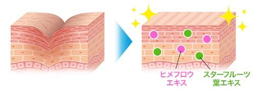 水溶性コラーゲンがニキビ跡をケア