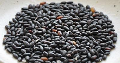こうじ酵素ブラックの成分・効果 黒米