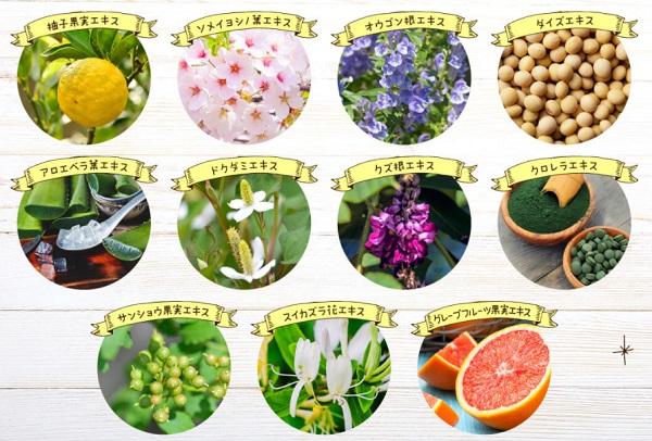 11種類の植物由来天然成分