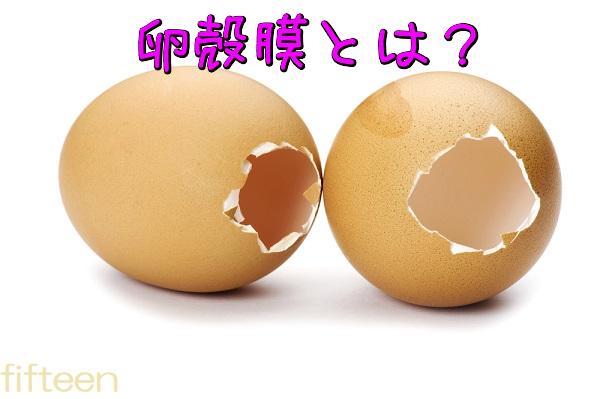 卵殻膜とは?