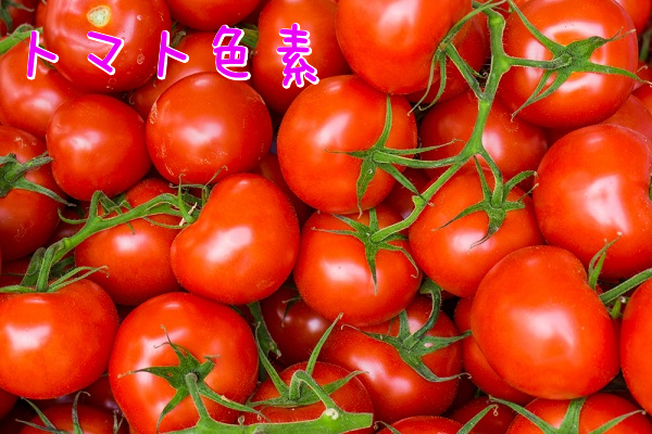 トマト色素
