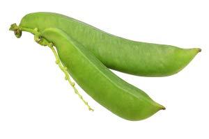 アシストデオなた豆