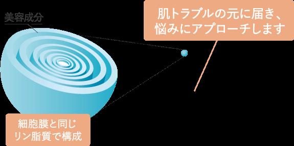 マイクロ多重層カプセル