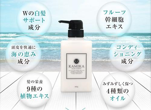 KAMIKA(カミカ)詳細