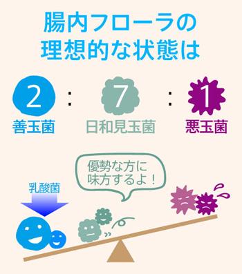 琉球発酵黒酵素善玉菌